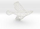 Dove2-whole-TR4 Rescaled(2.5) Rescaled(2) Voronoi  in White Strong & Flexible
