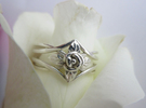 Detailed Rose ring with leaves in Polished Silver