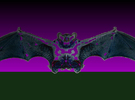 Batty2 in Full Color Sandstone