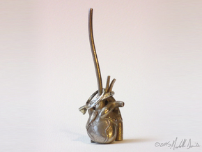 Anatomical Heart Ring Holder in Stainless Steel