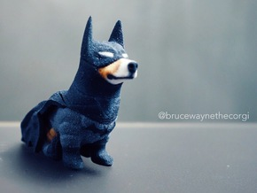 Bruce Wayne The Corgi Knight in Full Color Sandstone