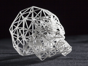 Wireframe Skull in White Strong & Flexible