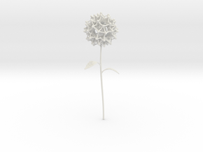 Dandelion Math Art in White Strong & Flexible