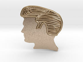 Elvis Hairstyle Belt Buckle in Polished Gold Steel