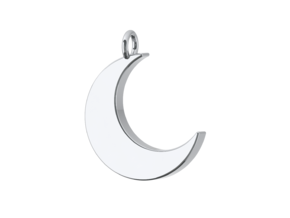 Crescent Moon Pendant in Polished Silver