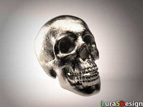 Human Skull - medium in Stainless Steel
