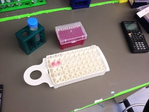 Freeze/Thaw 60-Well Microtube/Eppendorf Tube Tray in White Strong & Flexible