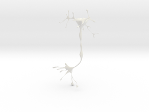 neuron in White Strong & Flexible