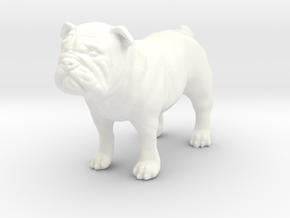 Bulldog  in White Strong & Flexible Polished