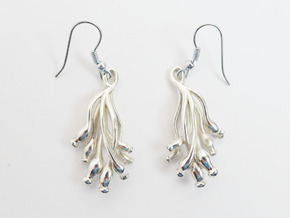 Ascilla earrings in Polished Silver
