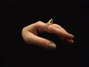 Chalcosoma Double (17mm) in Polished Gold Steel