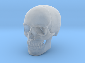 30mm 1.16in Human Skull Crane Schädel �е��еп in Frosted Extreme Detail