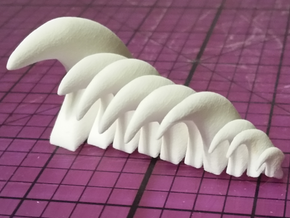 Cat Claw Assortment in White Strong & Flexible