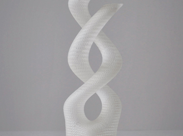 Medium Dna Vase 3d printed