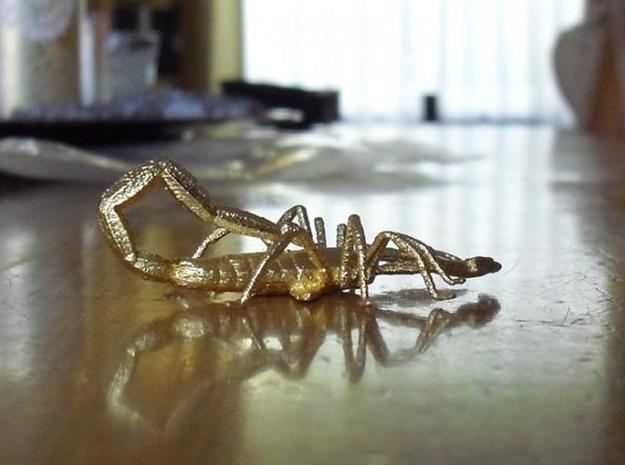 Scorpion miniature / pendant 3d printed photograph
