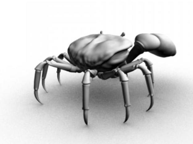 Fiddler Crab - Small 3d printed Maya render from the back.