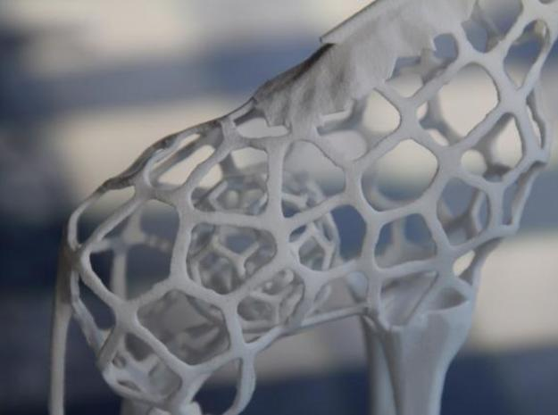 Voronaffe: Voronoi Giraffe with spheres inside 3d printed Body with two Voronoi balls, one inside the other