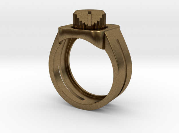 303 Acid Ring 3d printed