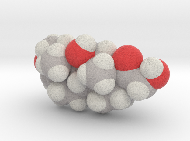 Cortisol molecule (x40,000,000, 1A = 4mm) 3d printed