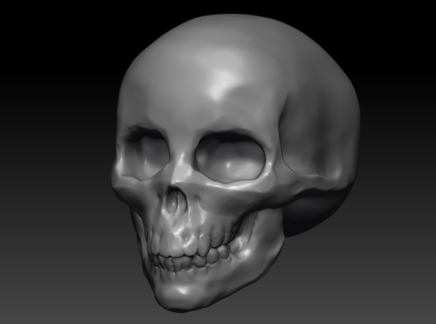 large skull hollow 3d printed
