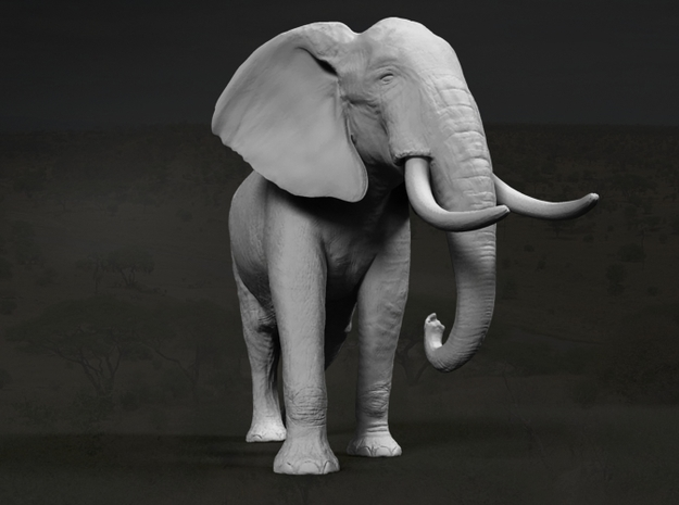 African Bush Elephant 1:12 Walking Male 3d printed