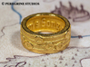 Ring - The Sun's Song (Size 13) 3d printed Gold Plated Glossy
