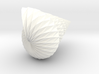Twisted Origami Shell - Seashell 3d printed