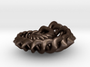 Spikelink from the Ammonite range by unellenu 3d printed