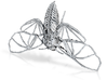 Death's Head Hawkmoth Skeleton 3d printed