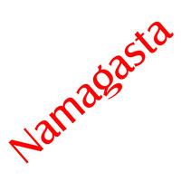 namagasta