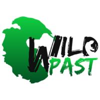 wildpast_studio