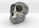 SPIDER MONKEY SKULL - ACTUAL SIZE in Raw Silver