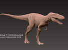 "Juvenile Tyrannosaurus "" Jane"" 1:35 v1 in White Strong & Flexible"