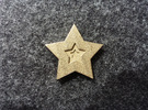 Star Charm (Precious metals)   in Stainless Steel