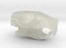 Rat Skull in Transparent Acrylic