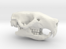 Mouse Skull in White Strong & Flexible