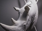Part 1 of 3 White Rhino (Headpiece) in White Strong & Flexible