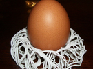 Birds Nest Egg Holder in White Strong & Flexible