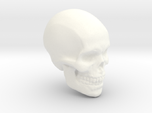 Skull Paperweight