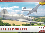 "1/144th - Curtiss 75 ""Hawk"" (P36)"