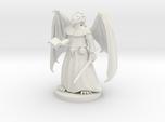 Dragonborn Priest