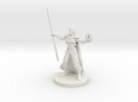 Half Elf Warlock 2