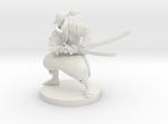 Elven Wild Fighter