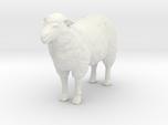 HO Scale Sheep