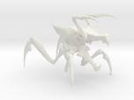 Arachnid Bug 3