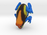 Orange Poison Arrow Frog