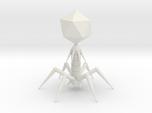 Bacteriophage T7 Model