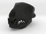 Cat Skull 3 Inches