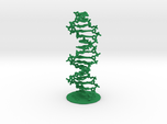 DNA double helix (with stand)