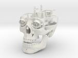 Full Animatronic Skull